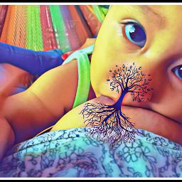 treeoflife treeoflifebrelfie treeoflove oaxaca truelove freetoedit