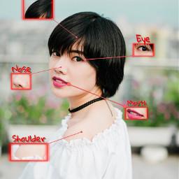 freetoedit anatomy hair shoulder face ecanatomy
