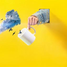 freetoedit glass fotoedit sky bird
