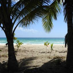 myphotography myphoto barbados beachside scenicview pcwaterday