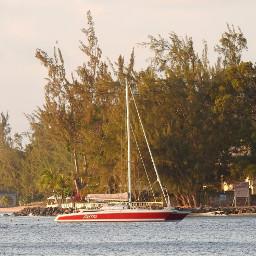 myphotography myphoto barbados beachside beachscape scenicview pcwaterday