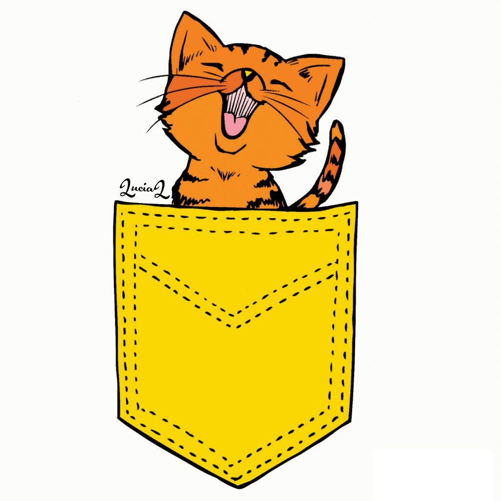 #cat #pocket #sweet #yellow ##orange