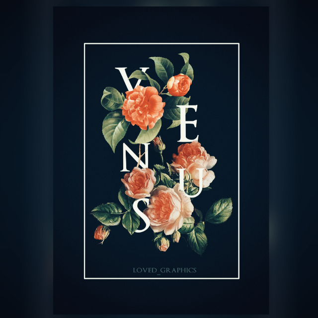 There's a us in Venus  . . . #venus #poster #design #madewithpicsart #graphics #posterdesign #flowers #typography