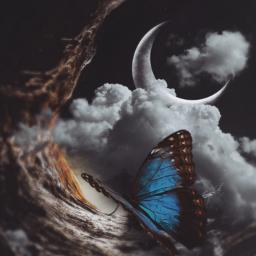 doubleexposure butterfly fantasy moon peaceful freetoedit