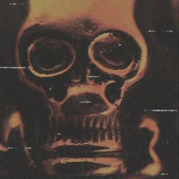 skull calavera skullart skulls skullhead