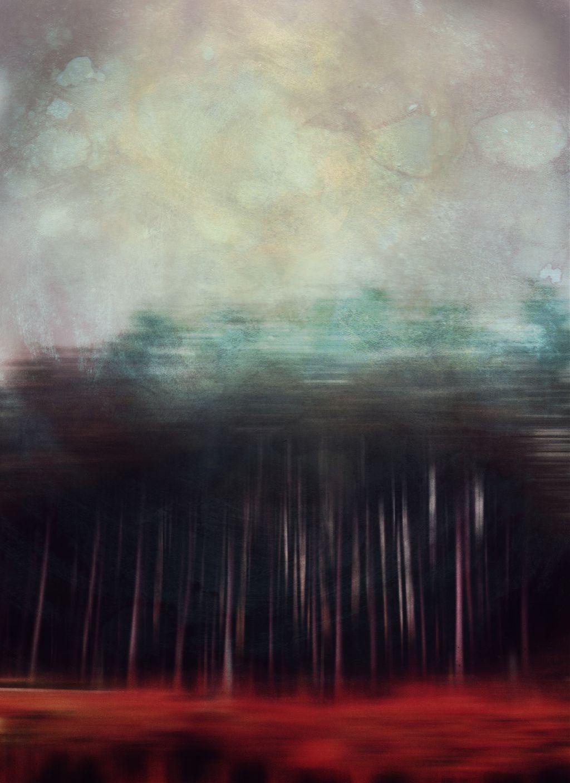 The Adamsky Effect #effect #trees #blur