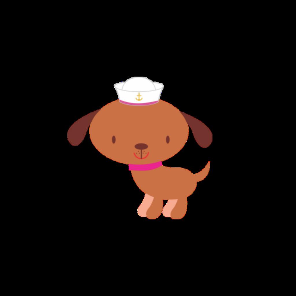 #dog #marinheiro #Brown #White #Blanco #branco