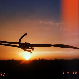 freetoedit sunset scenery eve fall