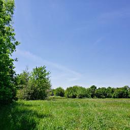 naturephotography landscape field trees grasses