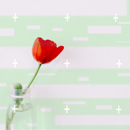 freetoedit remix edit happy flower