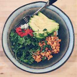 rice bowlfood tempeh vegan vegetarian