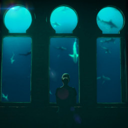 underwater underwaterworld underwaterlife myedit editbyme freetoedit ircintothegreen