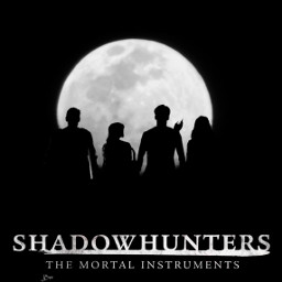 freetoedit shadowhunter shadowhunters aleclightwood alec