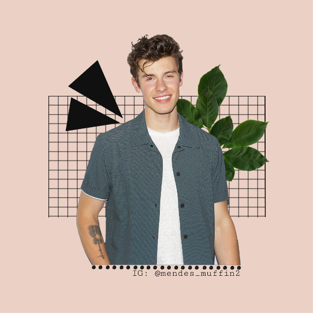 Sorry I haven't been active for a long time i was travelling  #freetoedit #shawnmendes #shawn #mendes #mendesarmy #tan #hot #leaf