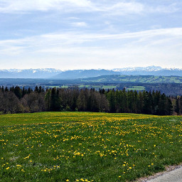 landscape bavaria mountains sky flowers