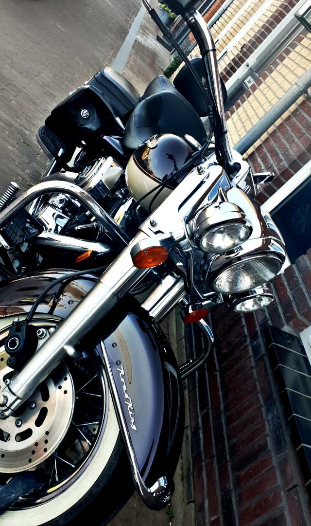 Hello beautiful! #motorbike#harleydavidson#roadking#gohardorgohome#chrome#remixme#remixit#freetoedit