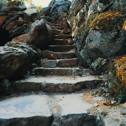 treppe stairs stairway stonesteps