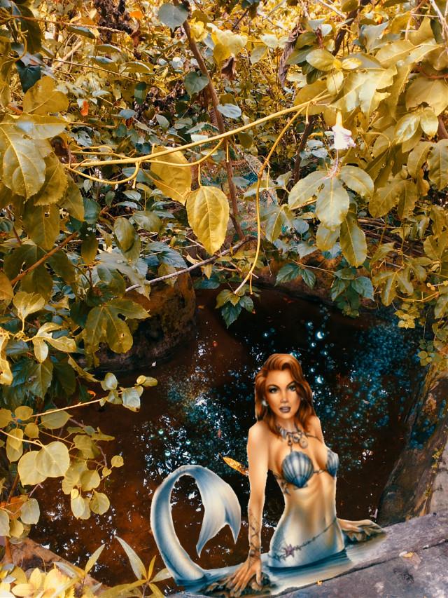 #freetoedit #mermaid #pool