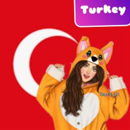 turkey turkei freetoedit