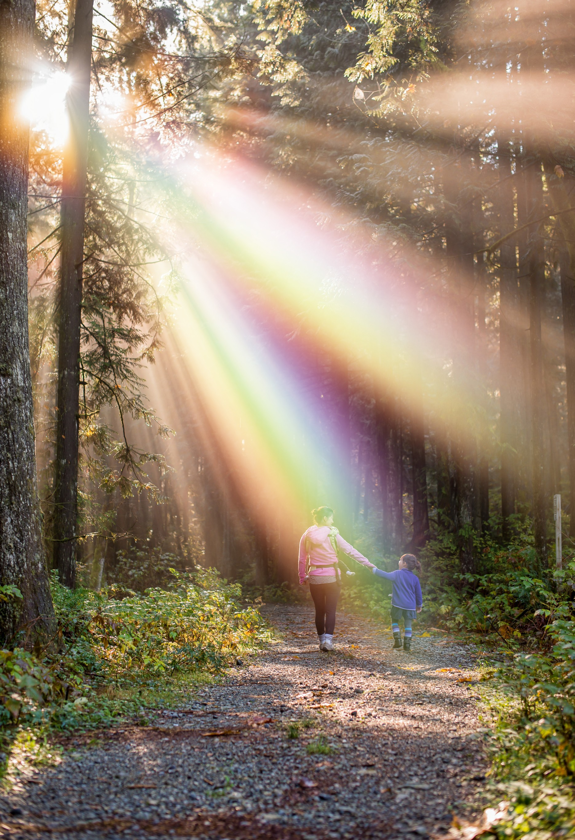 #freetoedit #mother #girl #family #rainbow #morning #sun #forest #amazing #love #nature #remixed from @freetoedit