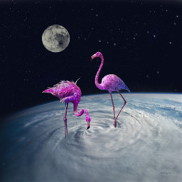 freetoedit galaxybackground flamingo galaxybrush moon