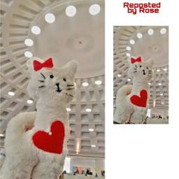 cat handmade picsart beautiful exhibition freetoedit