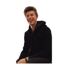 shawnmendes shawn mendes mendesarmy freetoedit