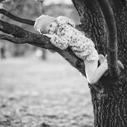 tree girl blackandwhite