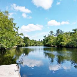 freetoedit river okefenokee swamp okefenokeeswamp pccolorsofnature pcblueandwhite pcshadesofblue pcwaterislife