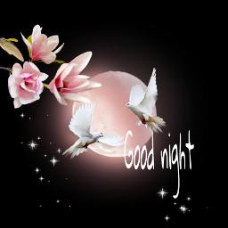 freetoedit sticker pngstickers fantsy goodnight