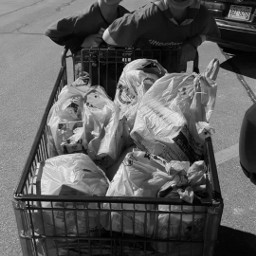 cart charity scoutingforfood cubscouts food pcshoppingcart
