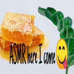 asmr honeycomb freetoedit
