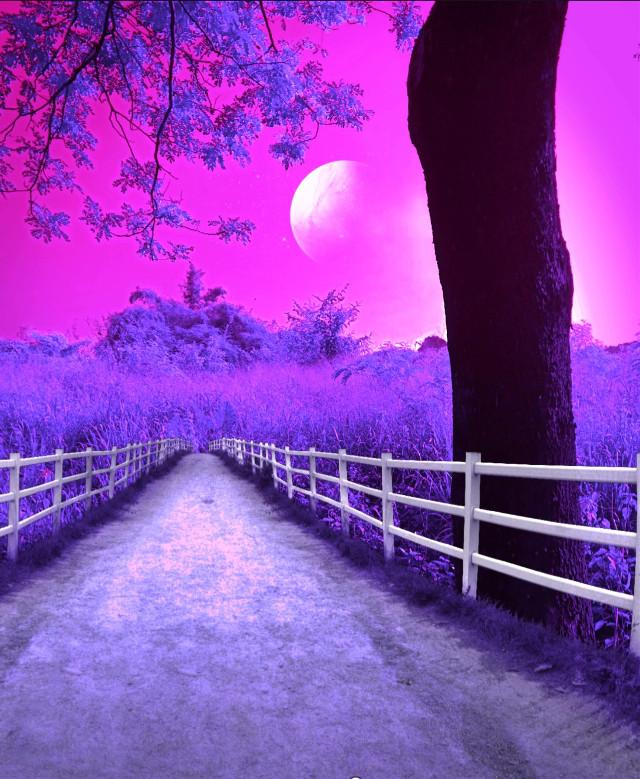 #freetoedit the last one ..purpleeeeeee 💜💜💜💜😁😁🤣🤣🤣. .#myedit #myclick📷  #photography #edited #madewithpicsart  @pa @freetoedit