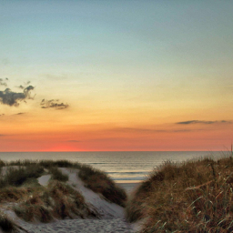 photography nature travel sunset beach pcsummertimeflashback