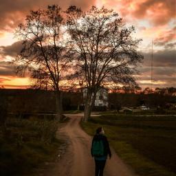 nature trees girl landscape sunset