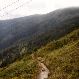 trail hiking travel austria photography freetoedit