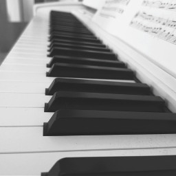 freetoedit piano instrument blackandwhite myphotography