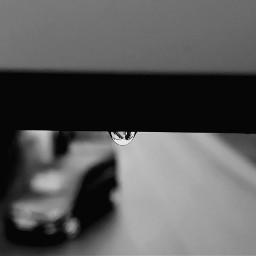 freetoedit waterdrop hanging blackandwhite myphotography