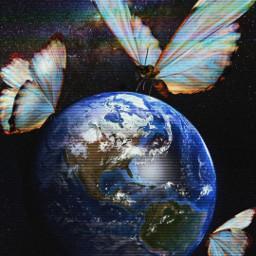 fantastic butterfly surreal alternative blue freetoedit