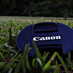 canont6 canon photo canonrebelt6