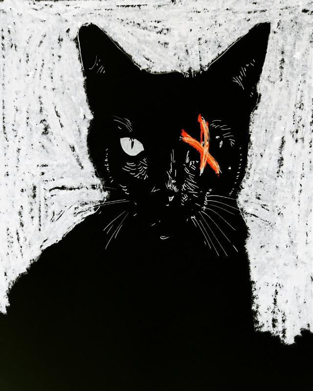 El gato negro... #drawing #dibujo #ink #theprometeus #illustration #poe