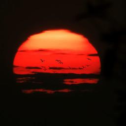 freetoedit sunset photobyme photography sun