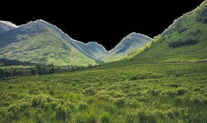 freesticker overlay blend field grass freetoedit
