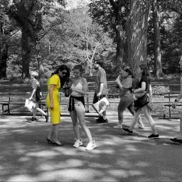 newyork centralpark streetlife streetohotography colorsplash
