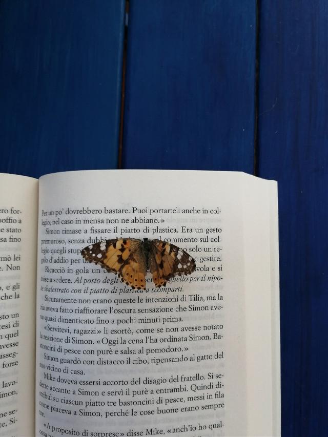 #photography #photooftheday #picoftheday #photo #butterfly #beautiful #book  #freetoedit