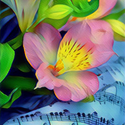flowers music magieffect fleurdelis beautiful