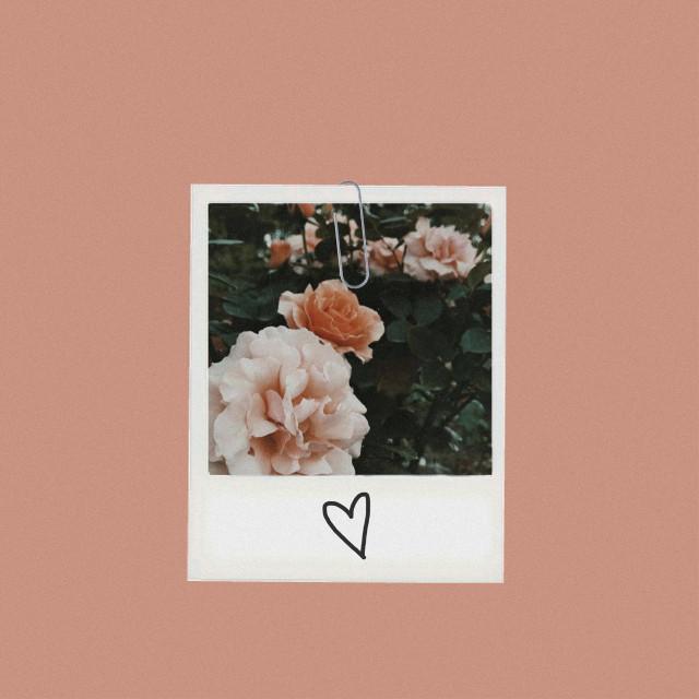 #polaroidframe  # pinkaesthetic