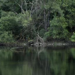 naturephotography naturelovers naturelover naturaleza natureaddict