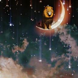 leo lion zodiac zodiacsign august freetoedit