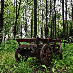 freetoedit wagon wagonwheel wagons carriage scenery